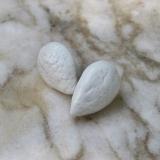 NUT - Arachide